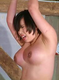 Oriental Needle BDSM