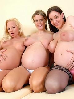 Busty Babe Pics