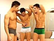 Peters twins muscle gay hunks threesome