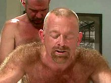Older hairy bears fuck in the kitchen